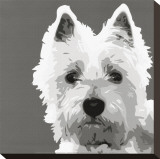 West Highland Terrier Stretched Canvas Print by Emily Burrowes