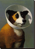 Filmhound Stretched Canvas Print by Michael Sowa