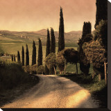 Country Lane, Tuscany Stretched Canvas Print by Elizabeth Carmel