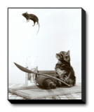 Cat and Mouse Stretched Canvas Print