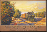 Wonderful Califonia Stretched Canvas Print by Kerne Erickson