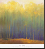 Deep Woods in Summer Stretched Canvas Print by Teri Jonas