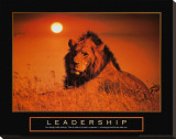 Leadership: Lion Stretched Canvas Print
