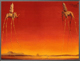 The Elephants, c.1948 Framed Canvas Print by Salvador Dalí