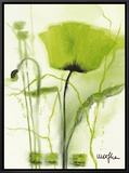 Coquelicot Vert II Framed Canvas Print by  Marthe