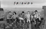 Friends - Lunch on a Skyscrape - 3D Poster Poster