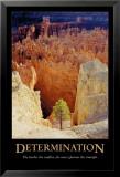 Determinación Póster por Rod Edwards