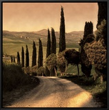 Country Lane, Tuscany Framed Canvas Print by Elizabeth Carmel