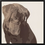 Chocolate Labrador Framed Canvas Print by Emily Burrowes