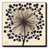 Lilac Bubble Flower Stretched Canvas Print by Alan Buckle