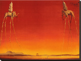 The Elephants, c.1948 Stretched Canvas Print by Salvador Dalí