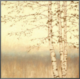 Birch Silhouette II Framed Canvas Print