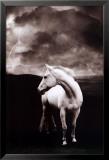 White Horse Plakater