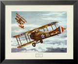 French Spad, 1916 Prints by Alfred Owles