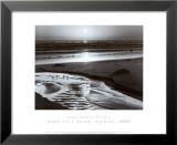 Fugle på strand Kunst af Ansel Adams