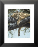 Lake Manyara Lioness Poster by Guy Coheleach