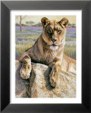 Serengeti Lioness Poster by Kalon Baughan
