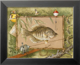 Crappie Poster by Anita Phillips