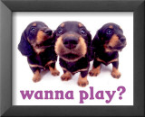 Wanna Play Affischer