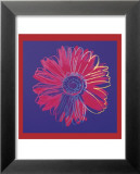 Daisy, c.1982  (blue and red) Poster von Andy Warhol