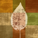 Fall Leaf I Posters by Paula Scaletta