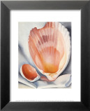 Two Pink Shells, 1937 Art by Georgia O'Keeffe