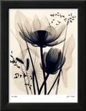 Lotus and Grasses Kunstdrucke von Judith Mcmillan