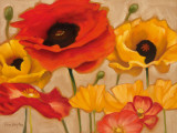 Poppies Prints by Diane Hoeptner