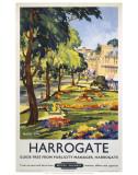 Harrogate Art
