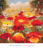 Meadow Poppies IV Prints by Lucas Santini