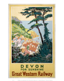 Devon for Sunshine Poster