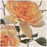Sueño en naranja I Pósters por Jill Barton