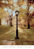 Autumn in the Park Posters by Tim Wampler