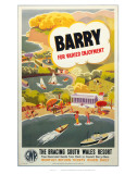 Barry for Varied Employment Poster