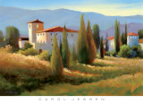 Blue Shadows in Tuscany I Poster by Carol Jessen