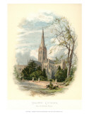 Salisbury Cathedral, from the Bishop&#39;s Palace Prints by Arthur Wilde Parsons