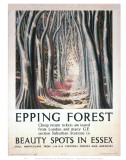 Epping Forest Beauty Spots in Essex Prints