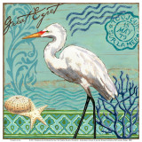 Shorebirds, Great Egret Art by Jennifer Brinley
