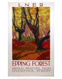 Epping Forest Quickly Reached Art