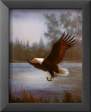 Fischender Adler Kunst von M. Caroselli