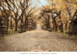 Central Park I Posters av Tim Wampler