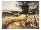 収穫する人たち ジクレープリント : ピーテル・ブリューゲル