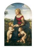 La belle jardinière Art par  Raphael