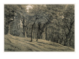 Forest of Fontainebleau Giclee Print by Théodore Rousseau