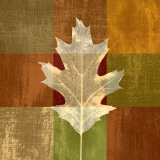 Fall Leaf II Prints by Paula Scaletta