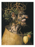 Winter Posters by Giuseppe Arcimboldo