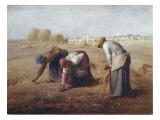 The Gleaners (Des Glaneuses Ou Les Glaneuses) Plakater af Jean-François Millet