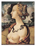 Portrait of Simonetta Vespucci Giclee Print by Piero di Cosimo 