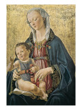 Madonna and Child (Madonna E Bambino) Prints by Domenico Ghirlandaio