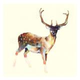 Le cerf aux chaussettes blanches Poster par Charmaine Olivia